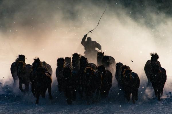 Победитель конкурса тревел-фотографии. Погонщик лошадей в Монголии (Энтони Лау).