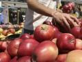 Скрытая нищета в Голландии: как выжить в кризис