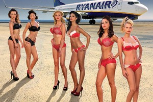 Горячие стюардессы фото фото 567-261
