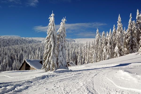 Заснеженные склоны Словакии