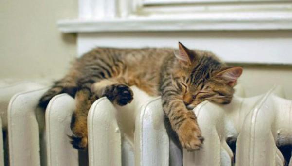 Энергоаудит поможет сохранять тепло в доме и меньше тратить на коммуслуги