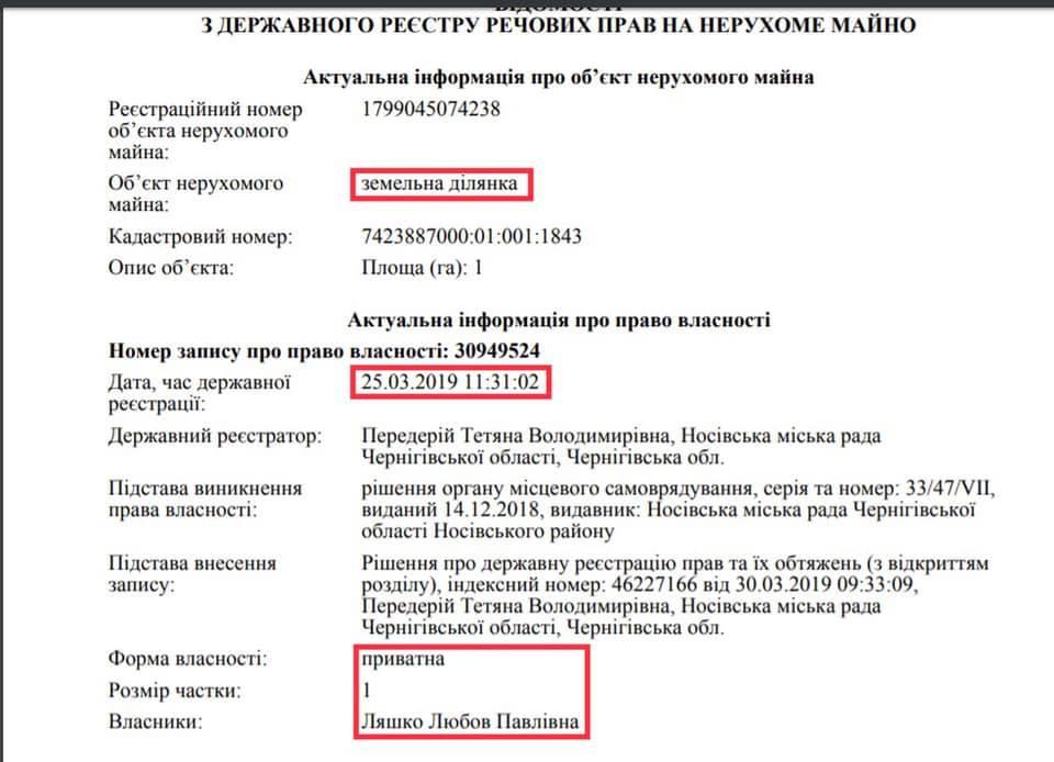 Информация о приобретенном земельном участке в Носовке Черниговской области