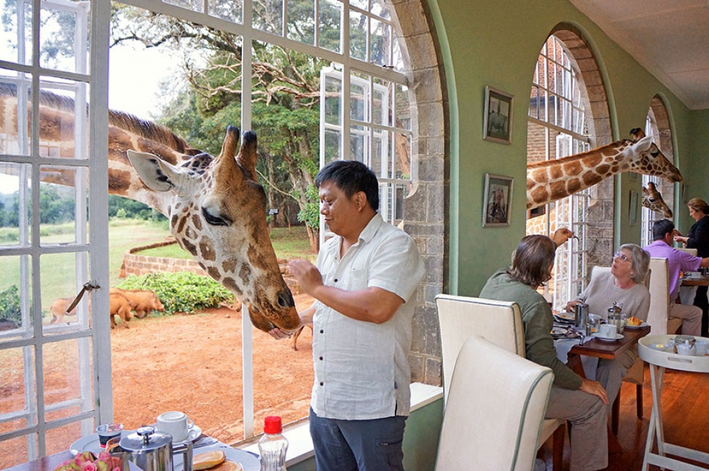 Отель Giraffe Manor, Кения