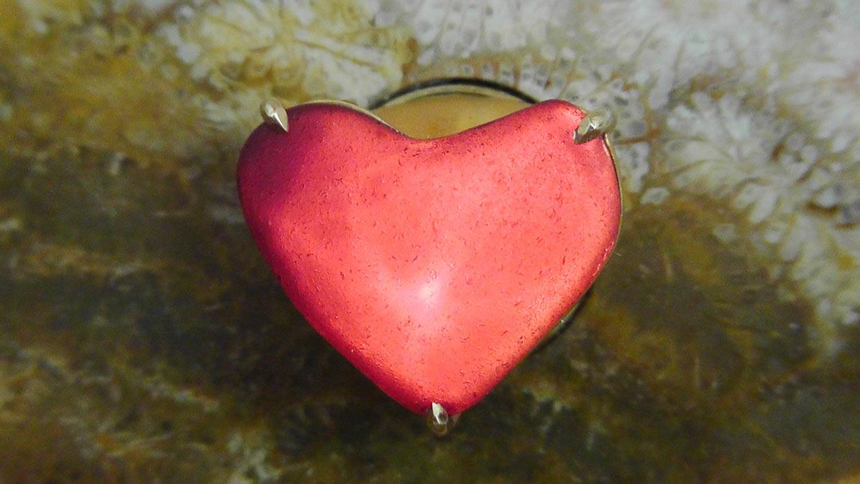 Кулон в форме сердца так дорог, поскольку его творец - сама природа, говорит Кэрролл