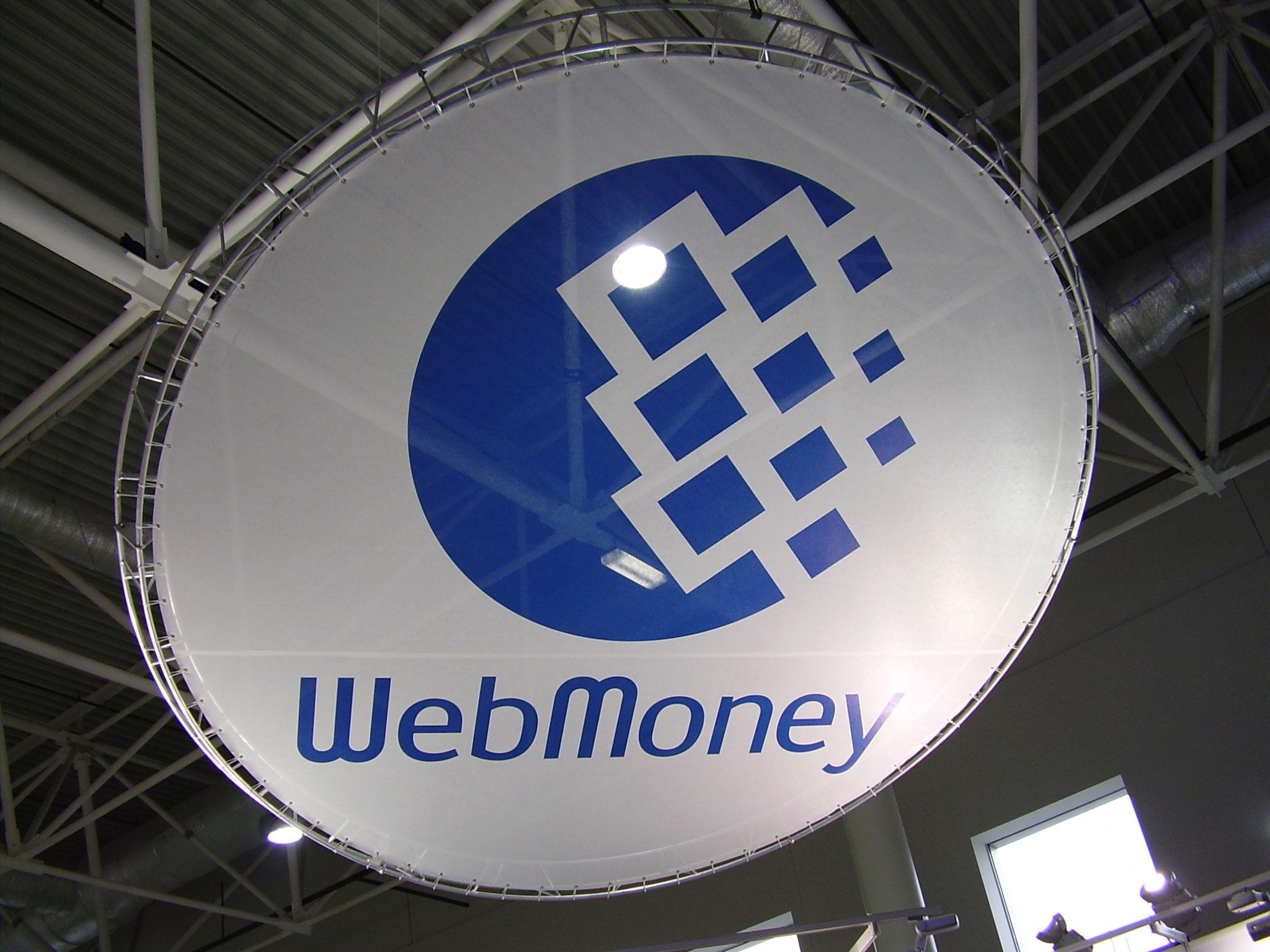 Проверка Налоговой WebMone заблокировала деньги украинцев