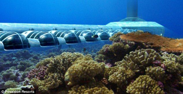С окна номера будет открываться необычайный вид на подводный мир