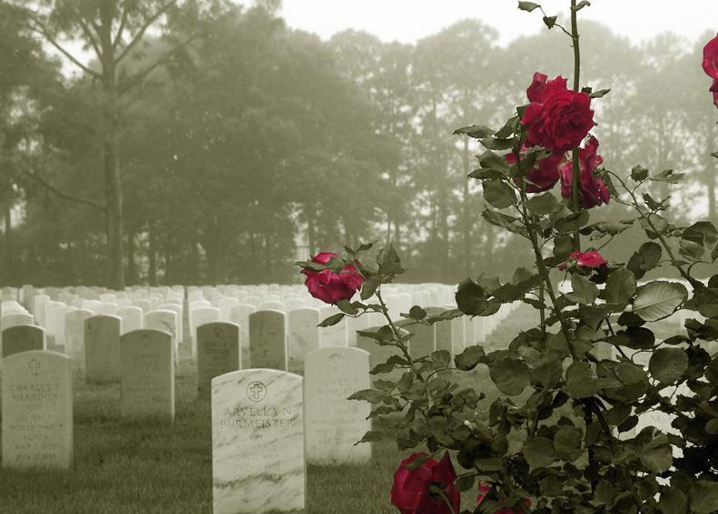 Кладбищенские розы: не траться на подарок девушке!