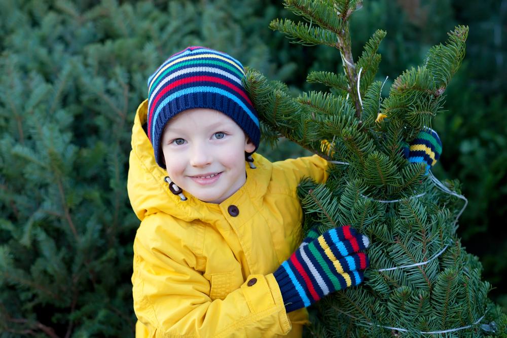 На елках можно накрутить до половины стоимости
