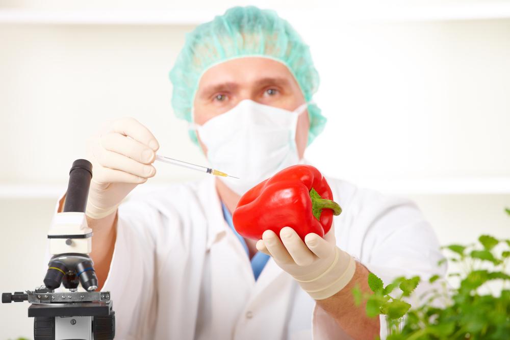 Украина может стать главным производителем ГМО в Европе