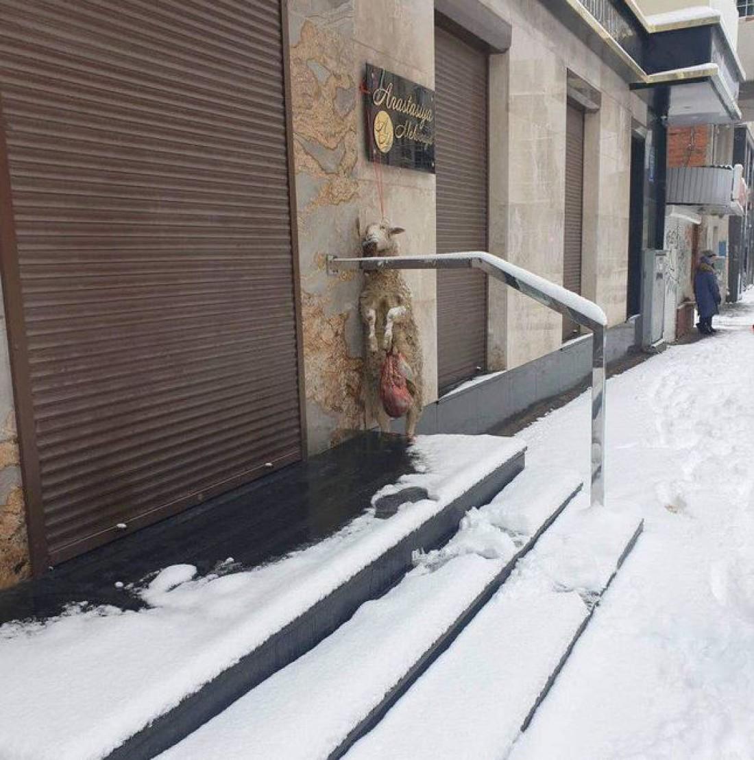 Магазин находится на улице Маяковского