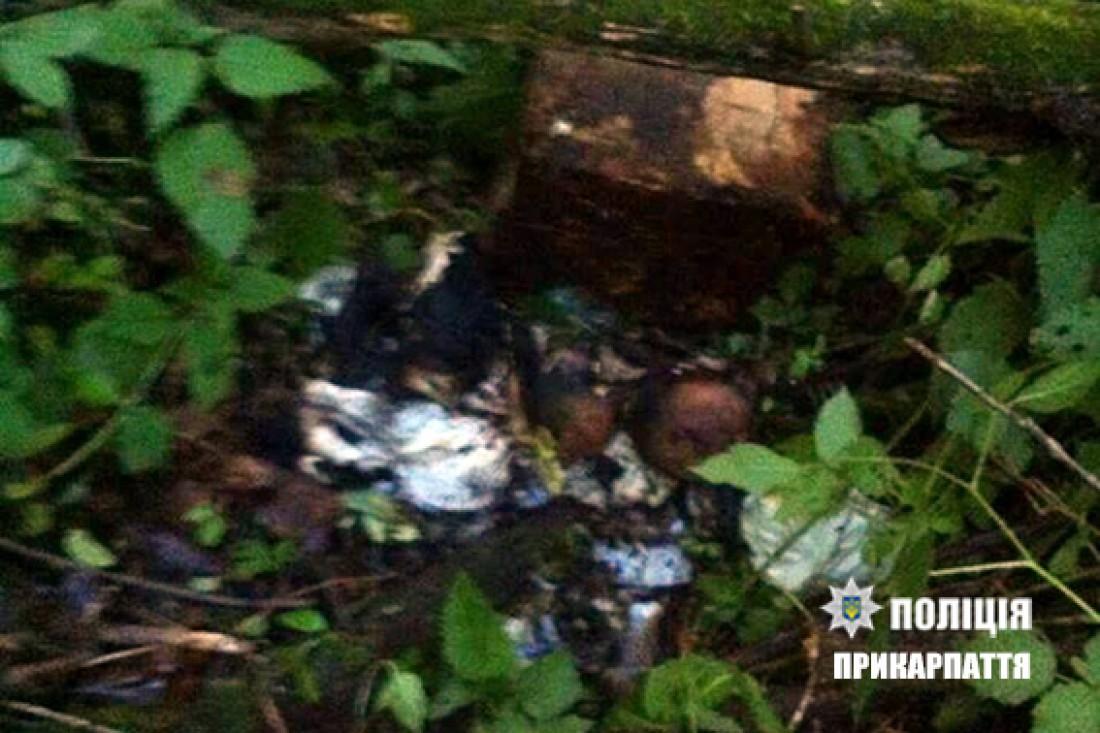 После неудачной попытки женщина вынесла труп в лес, где снова пыталась сжечь