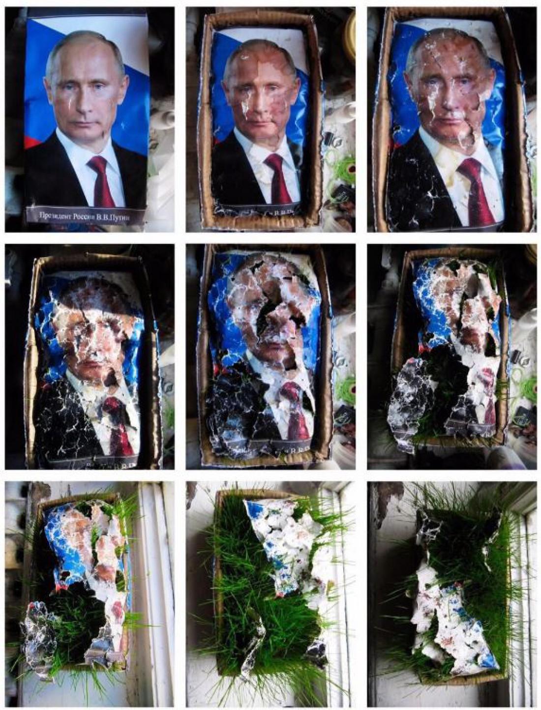 Фото растений, растущих сквозь Путина, не понравилось полиции