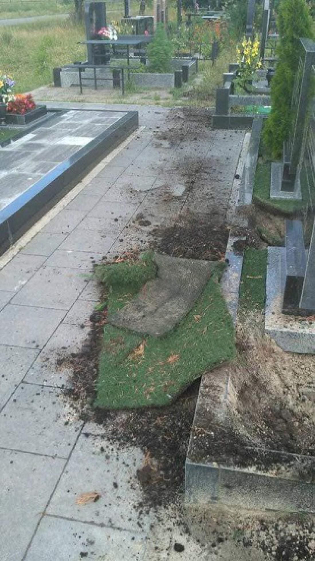 В комментариях пишут, что вандалы могли выкопать дерево, которое росло на могиле