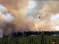 Масштабный пожар в Канаде: огонь охватил более 460 га