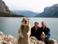 Топ-10 курьезных фото с животными по версии The Daily Telegraph