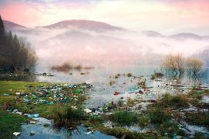 Фотограф шокировал видом заповедника на Закарпатье