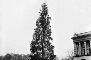 Новогодняя елка в 1981 году