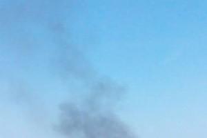 Пожар в парке Дружбы народов