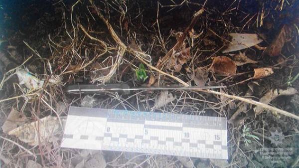 По дороге подростки выбросили оружие преступления у заброшенного дома