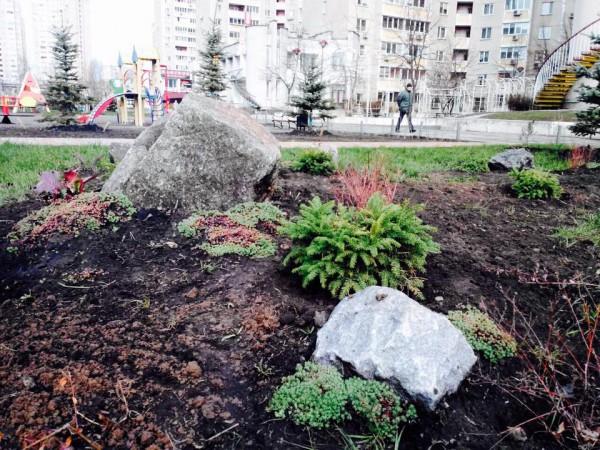 В Киеве воруют елки