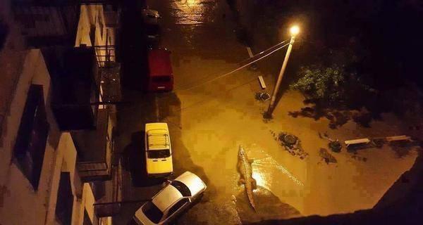 Крокодил в Тбилиси