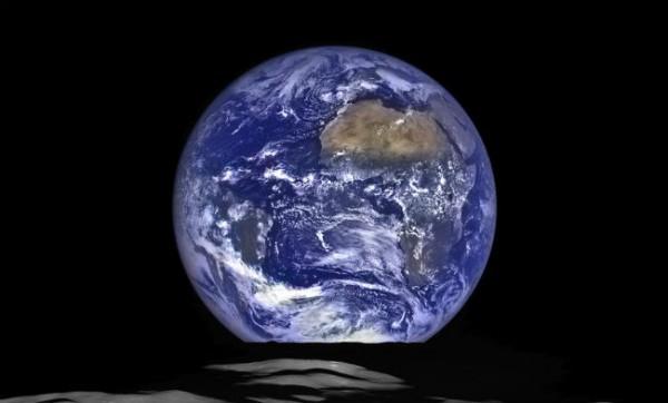 Ко Дню Земли Google подготовил дудлы