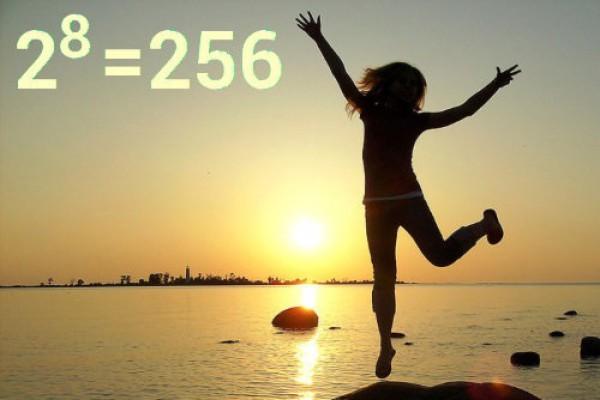 Нужно отсчитать от начала года ровно 256 дней