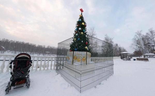 В России появилась необычная елка