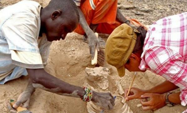 Следы древней войны были обнаружены в Кении