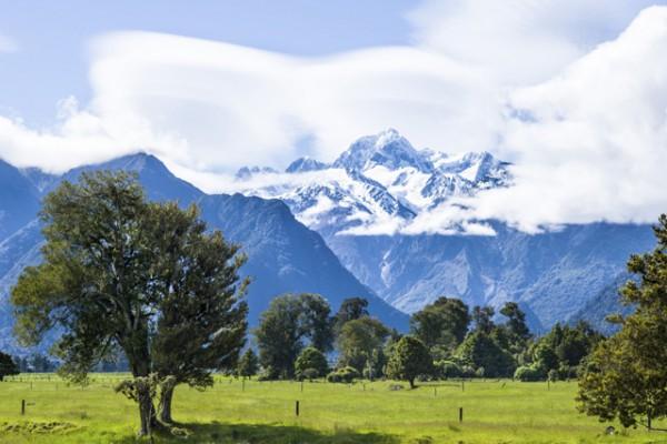 Западное побережье, Новая Зеландия