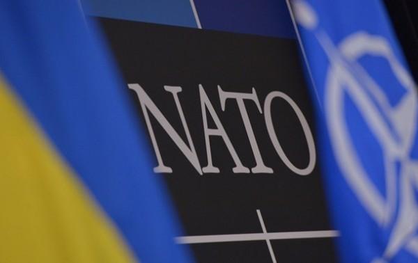 До урегулирования конфликта на Донбассе, у Украины нет шансов стать членом НАТО