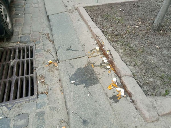 Сторонников Саакашвили забросали яйцами