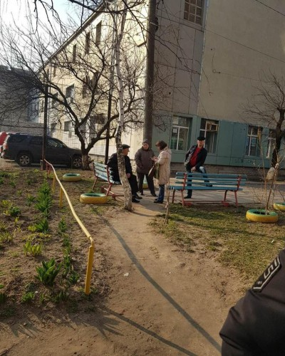 Активисты насчитали 300 трупов пернатых