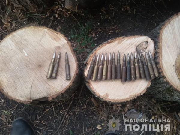 Также в ульях были найдены патроны