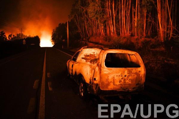 ВПортугалии лесные пожары забрали  жизни 24 человек