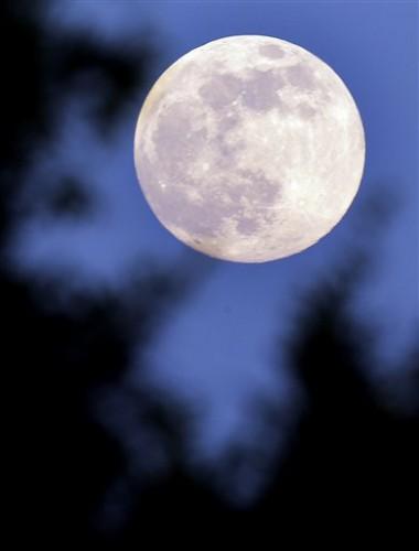 Этой ночью Луна была очень близко к земле