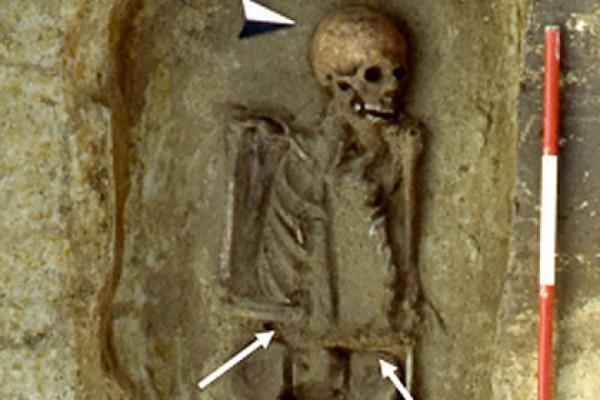 Так выглядит находка археологов