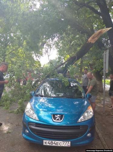 Ураган повалил деревья