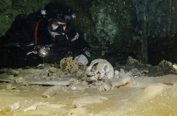 На дне также нашли окаменелости вымерших животных