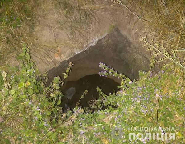 Диану нашли в яме