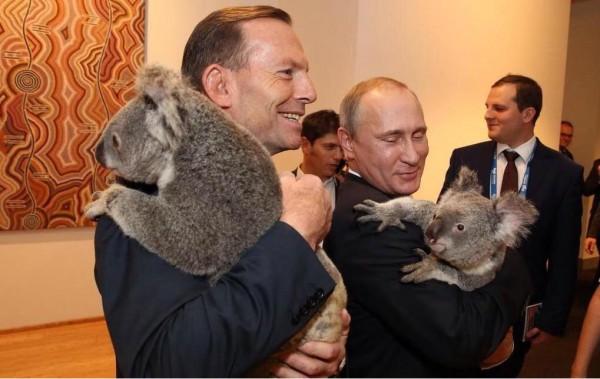 Президент России Владимир Путин и премьер-министр Австралии Тони Эббот на приеме в честь лидеров саммита G20 сфотографировались с коалами