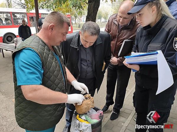 Правоохранители изъяли череп