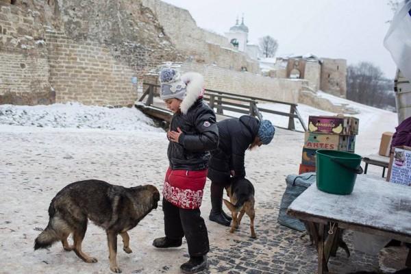 Дети играют с собаками в Изборске