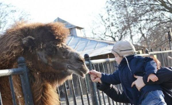Неделя доброты в Николаевском зоопарке