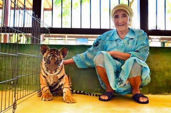 С тигренком в тайском зоопарке