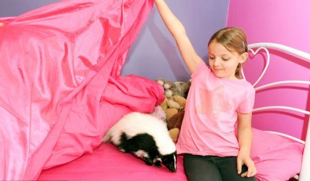 Мими ни за что не променяет Стуш на традиционного кота или собаку