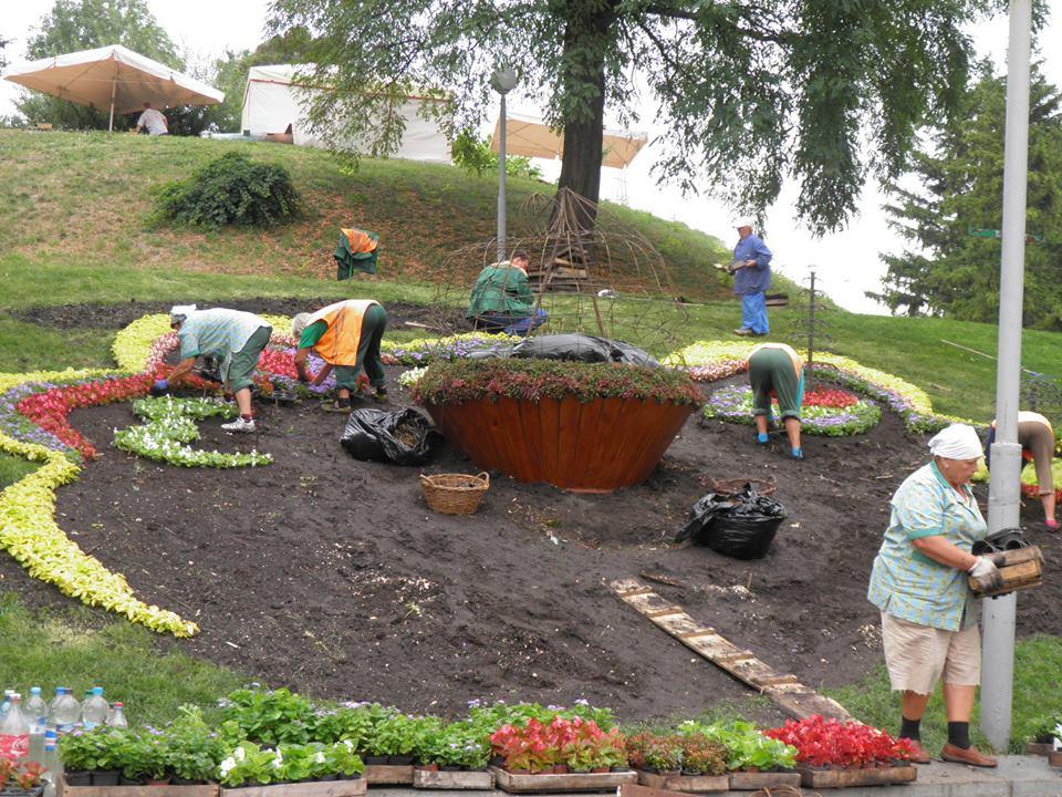 На Певческом поле готовятся к новой выставке цветов