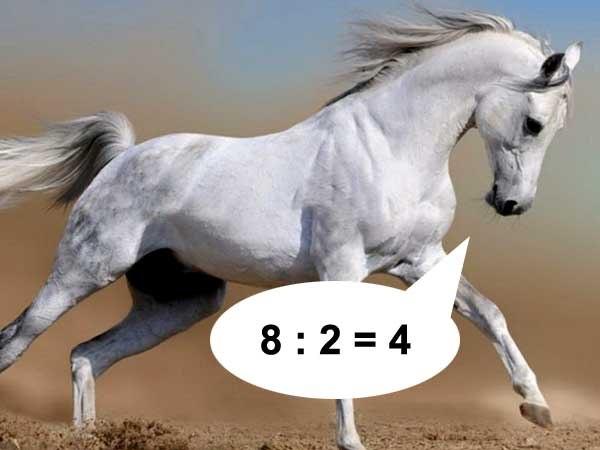 Отлично, конь! Ты прав!