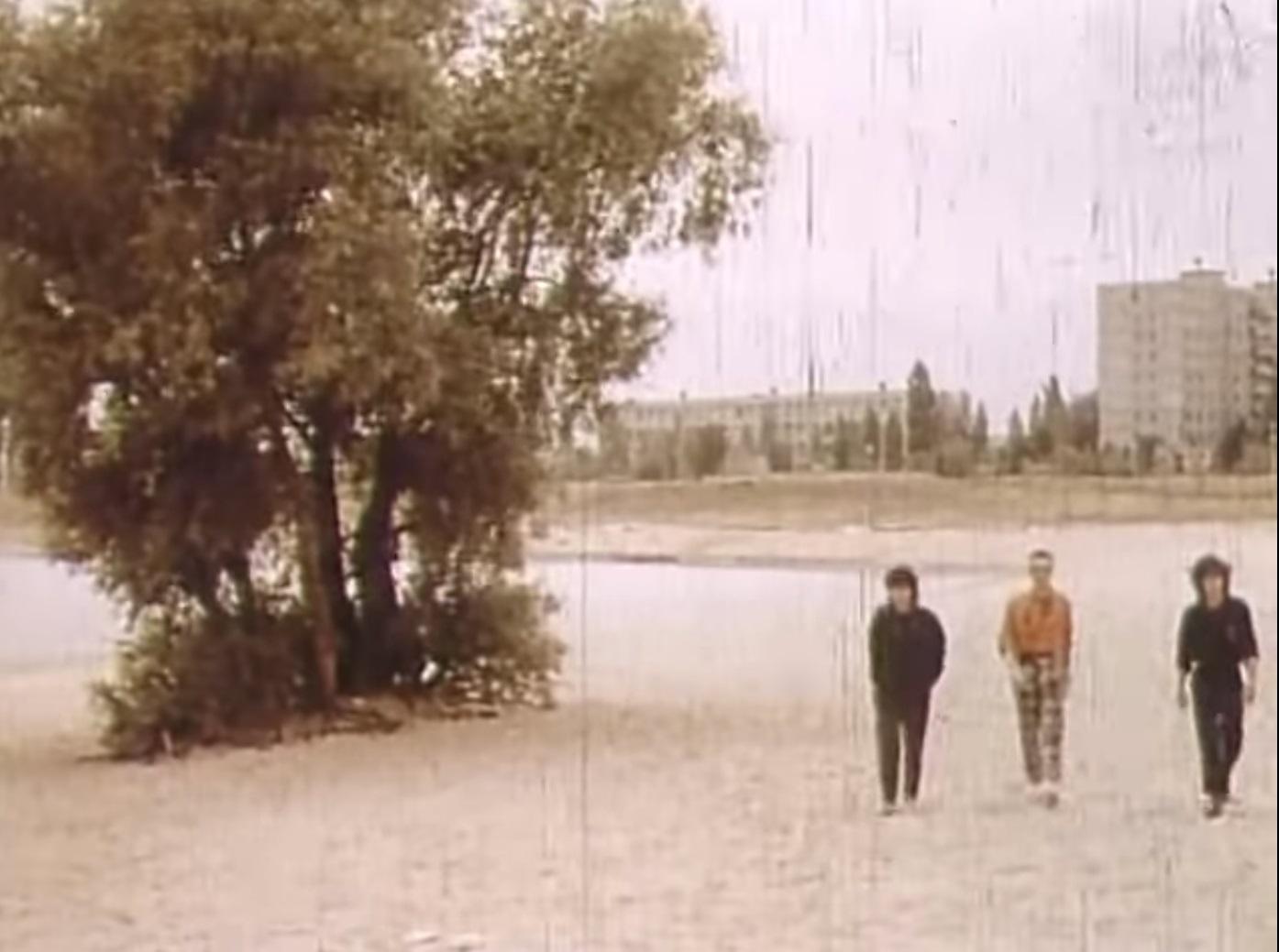 Виктор Цой и знаменитое дерево