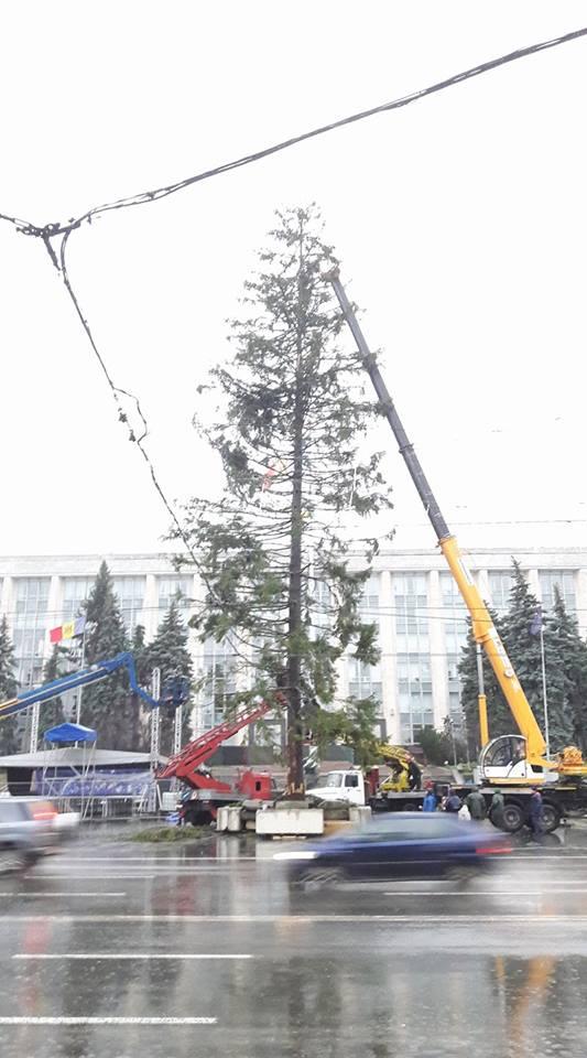 Установка главной елки Молдовы